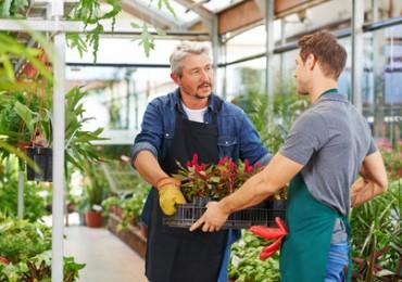 Mann macht Ausbildung beim Gärtner in Gärtnerei