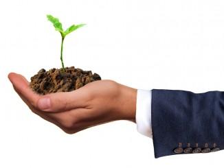 Jak się rozwijać by odnieść sukces