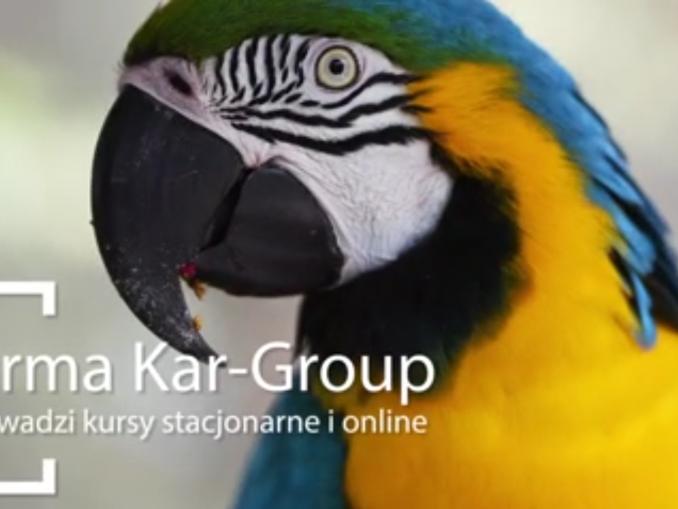 Kurs opiekun zwierząt domowych online
